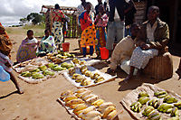 Photo of bananas for sale.